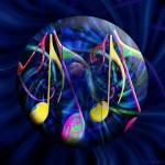 Energy Nova Music 2 web